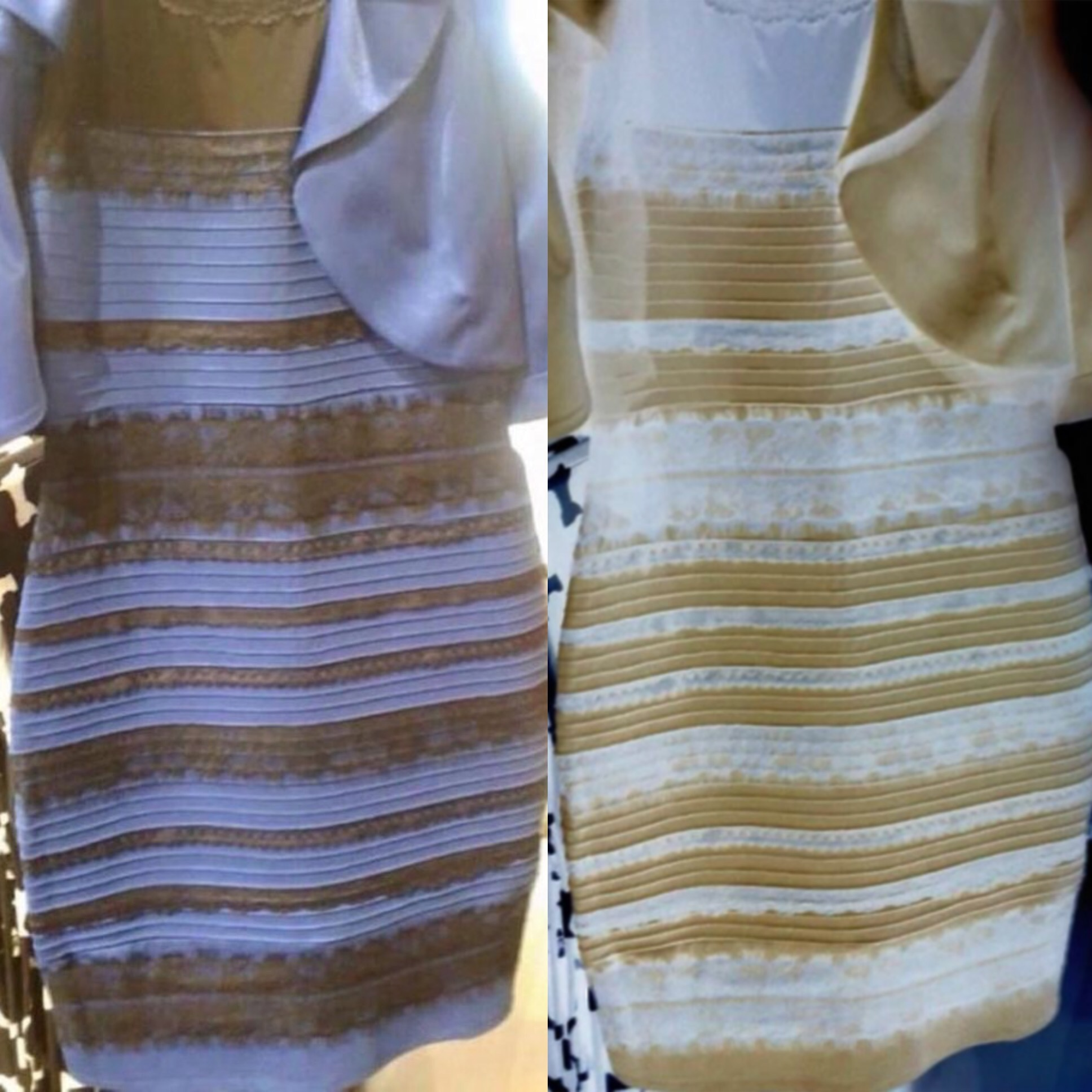 Gold Or Blue Dress Optical Illusion Photo Dress